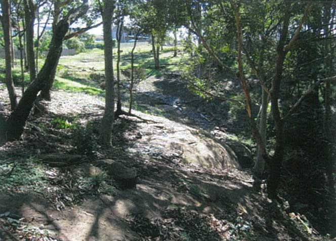 Fern Creek Gully Restoration Project