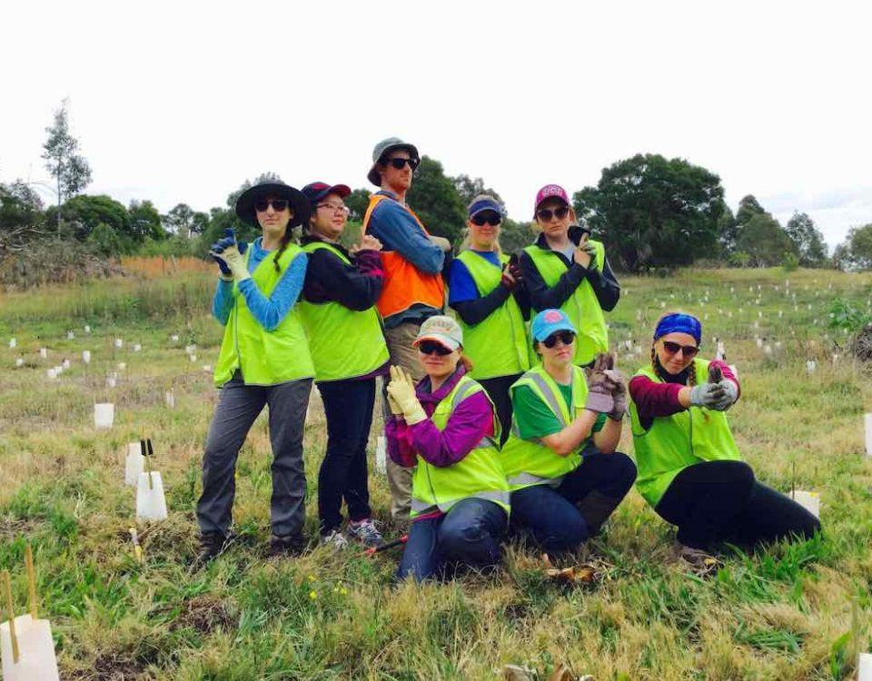 Wetland-Care-Aust-Hexham-Swamp-CVA-ISV-crew-June-2016-sml