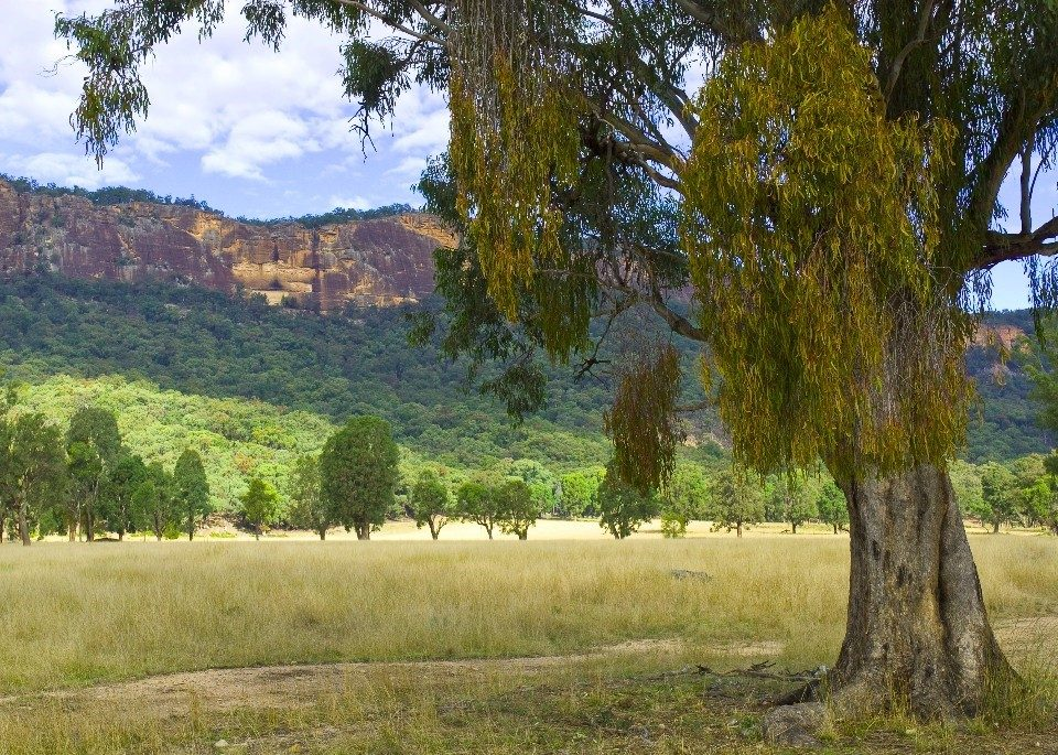 Land Management Reforms NSW