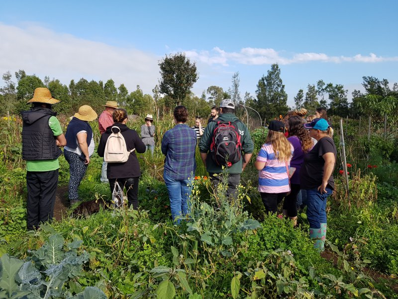 Sustainable small farm education