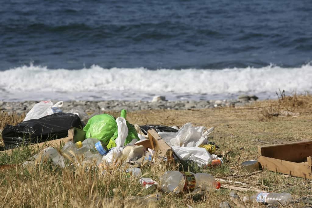 Keep NSW Beautiful Community Litter Grants