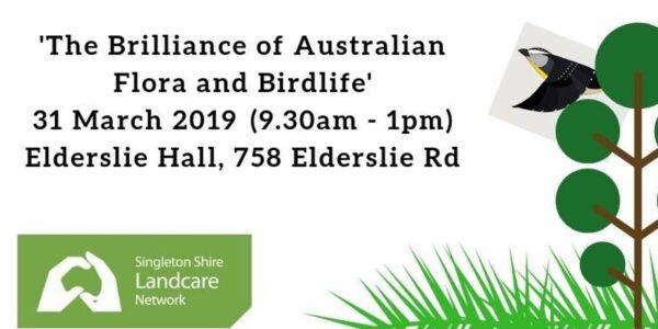 The Brilliance of Australian Flora and Birdlife @ Elderslie Hall