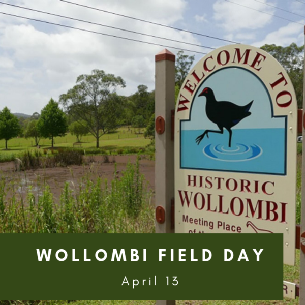 Wollombi Field Day