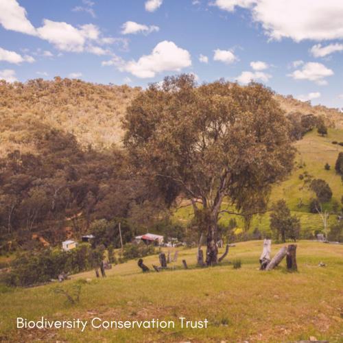 Biodiversity Conservation Trust