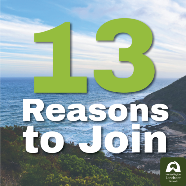 13 Reasons to Join