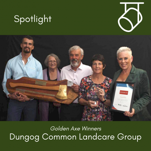 Spotlight on … Dungog Common Landcare Group
