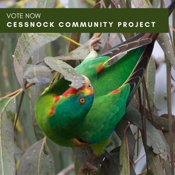 My Community Project – Cessnock