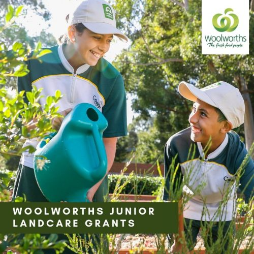 Woolworths Junior Landcare Grant