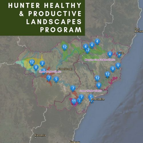 Hunter Healthy and Productive Landscapes Program