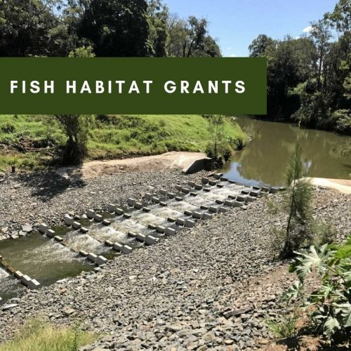 Fish Habitat Grants