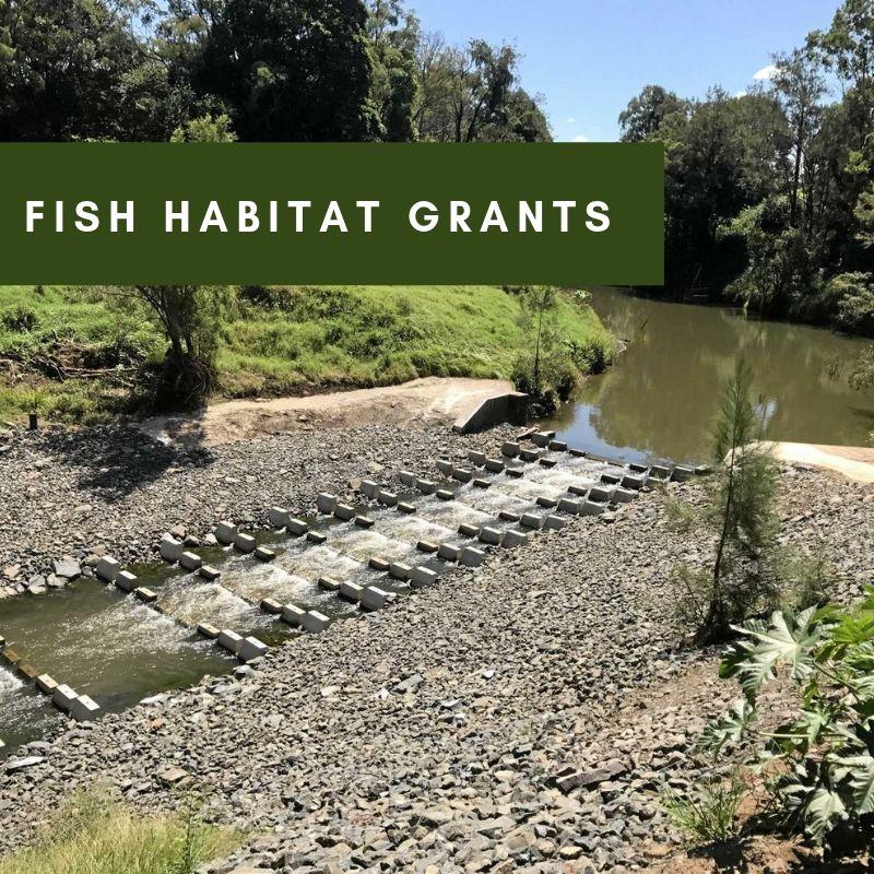 fish grants