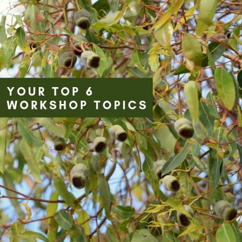 Top 6 Workshop Topics – Survey Results