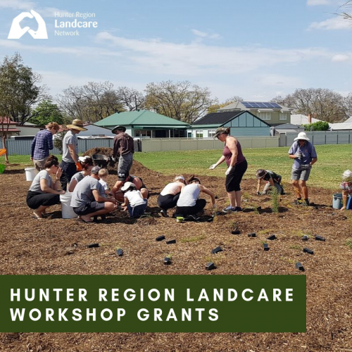 Hunter Region Landcare Workshop grants 2019-2020