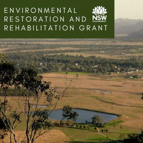 Environmental Restoration and Rehabilitation