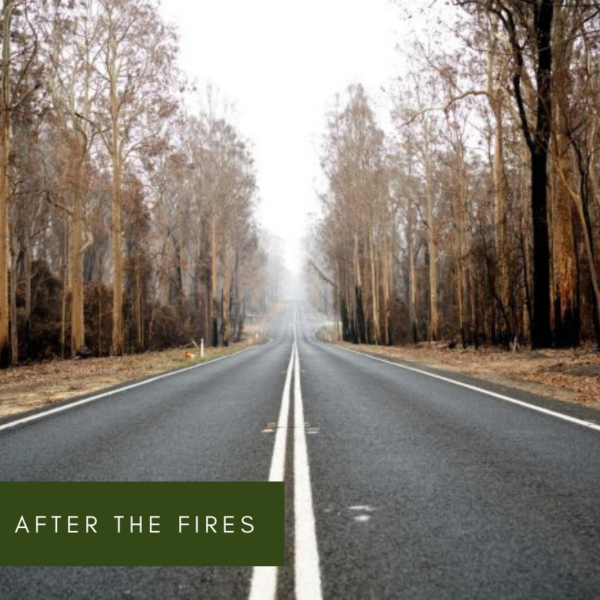 After the Fires