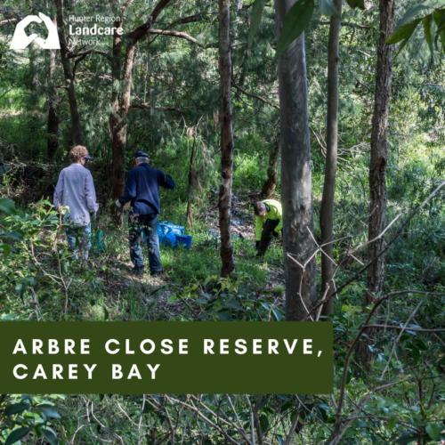 Arbre Close Reserve, Carey Bay