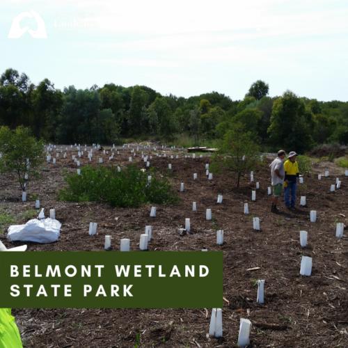 Belmont Wetlands State Park
