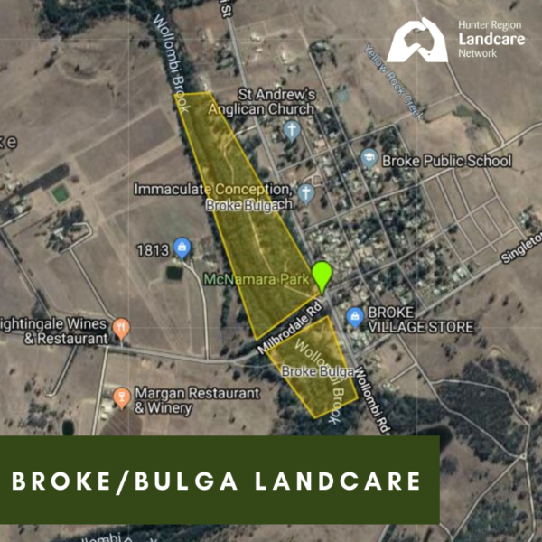 Broke/Bulga Landcare