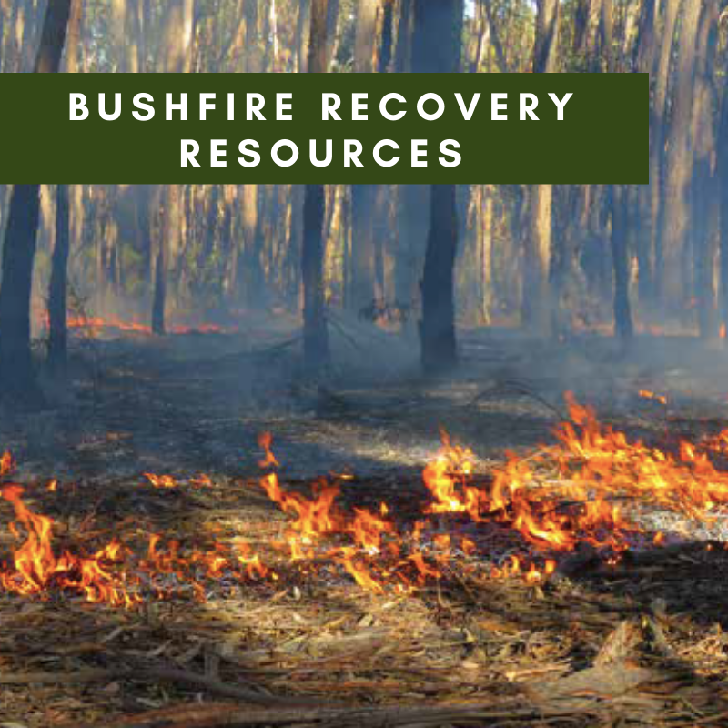 Bushfire Recovery Resources