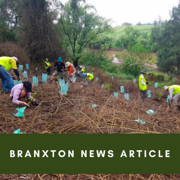 Branxton News Article