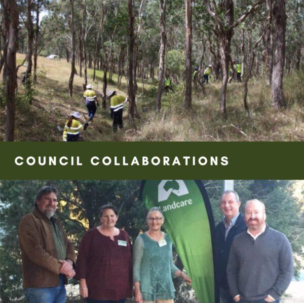 Council Collaborations