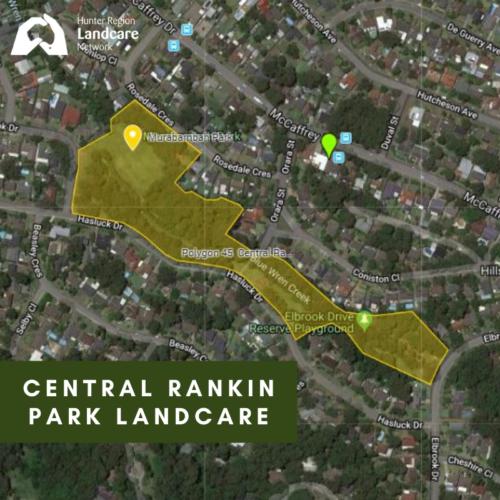 Central Rankin Park Landcare