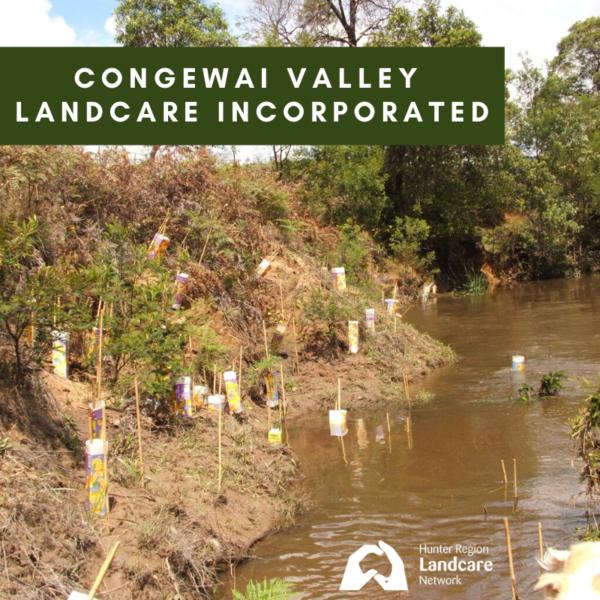 Congewai Valley Landcare Incorporated