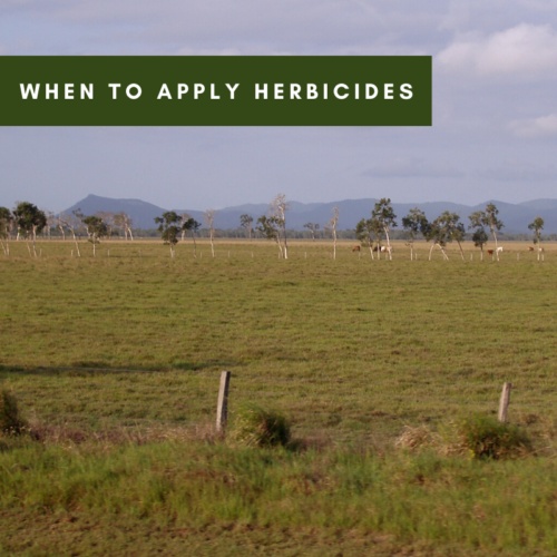 When To Apply Herbicides