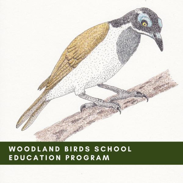 Woodland Birds School Education Program