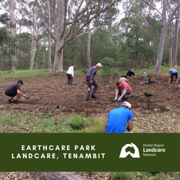 Earthcare Park Landcare, Tenambit