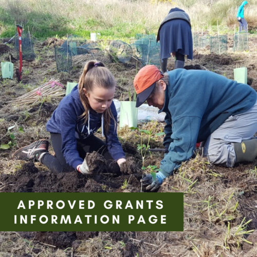 Approved Grants Information Page