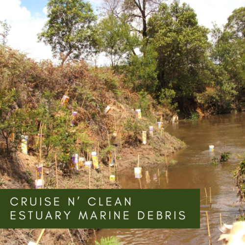 Cruise n' Clean Estuary Marine Debris