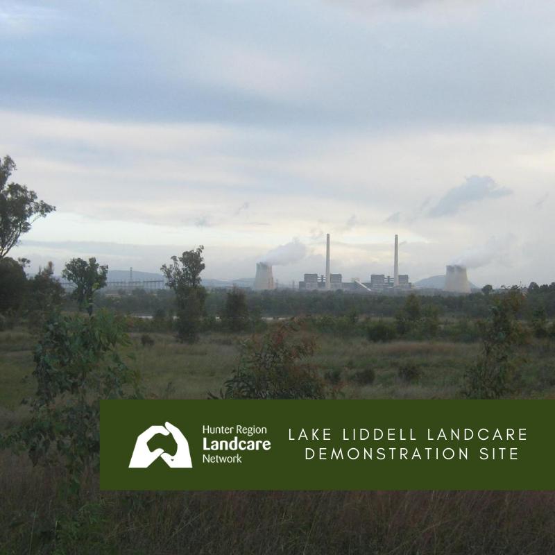 Hunter Region Landcare