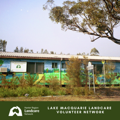 Lake Macquarie Landcare Volunteer Network