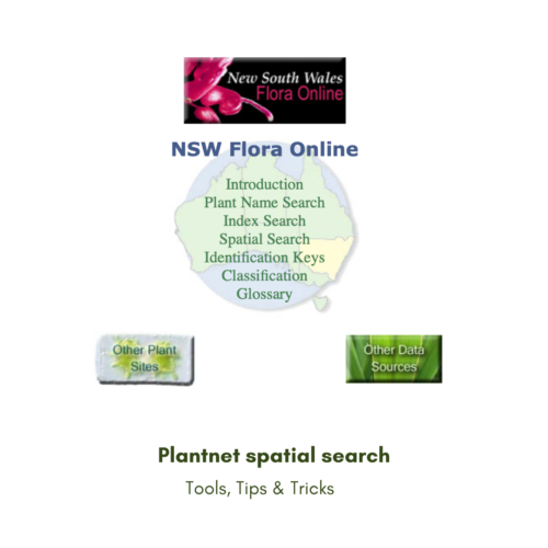 Tools, Tricks and Tips: How to find out what plants grow in your area (plantnet spatial search)