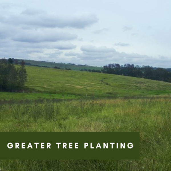 Luskintyre Landcare Group and The Greater Bank Planting