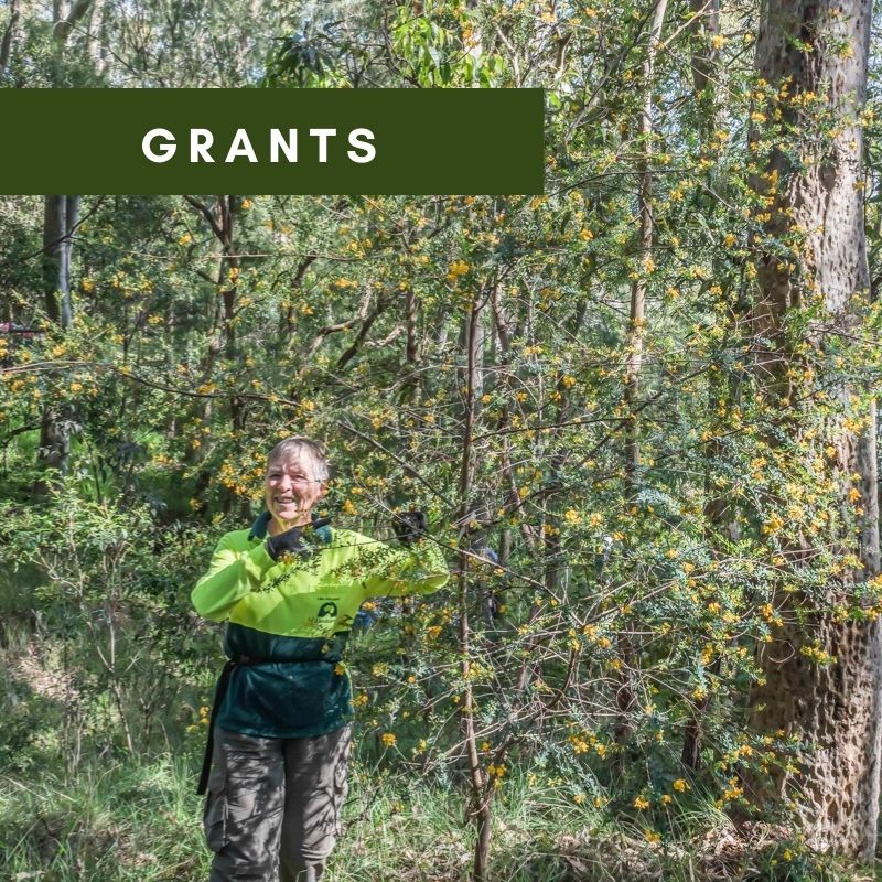 About Hunter Region Landcare Network