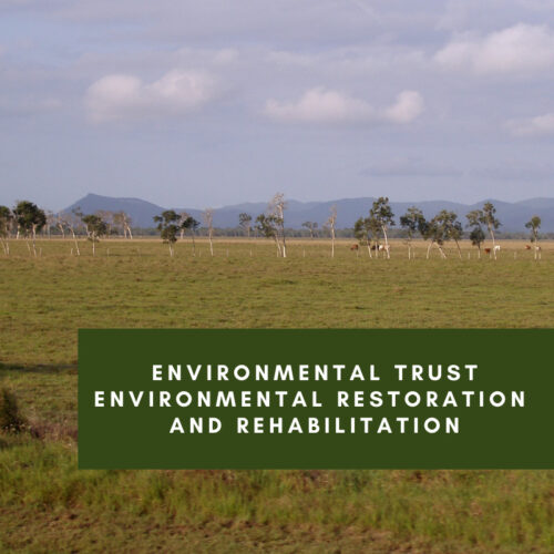 Environmental Trust Environmental Restoration and Rehabilitation