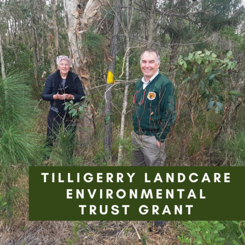 Tilligerry Landcare Environmental Trust Grant