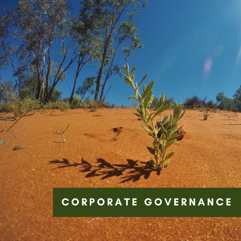 Corporate Governance-2