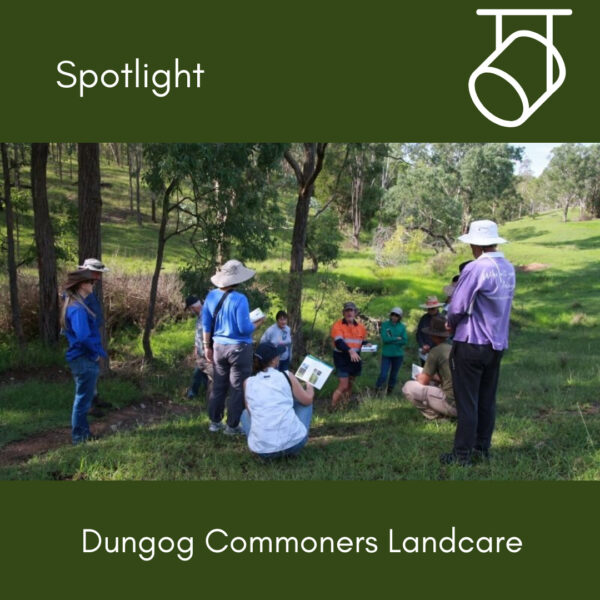 In the Spotlight: Dungog Commoners Landcare