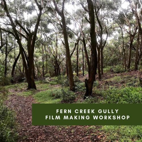 Fern Creek Gully Film Making Workshop