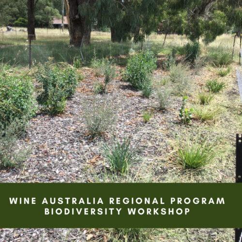 Wine Australia Regional Program biodiversity workshop