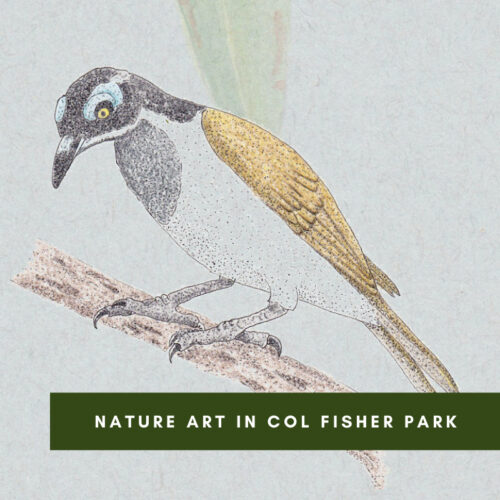 Nature Art in Col Fisher Park – Singleton Landcare