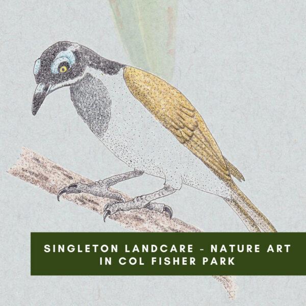 Singleton Landcare – Nature Art in Col Fisher Park