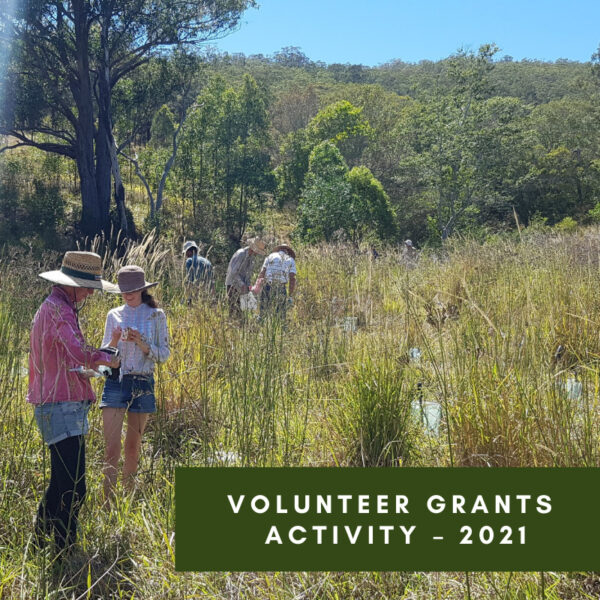 Volunteer Grants Activity – 2021 Volunteer Grants through your local Federal MP