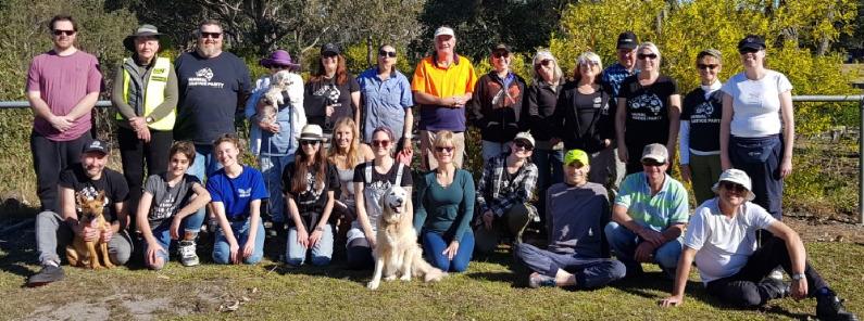 planting crew at Tilligerry koala forest 2019