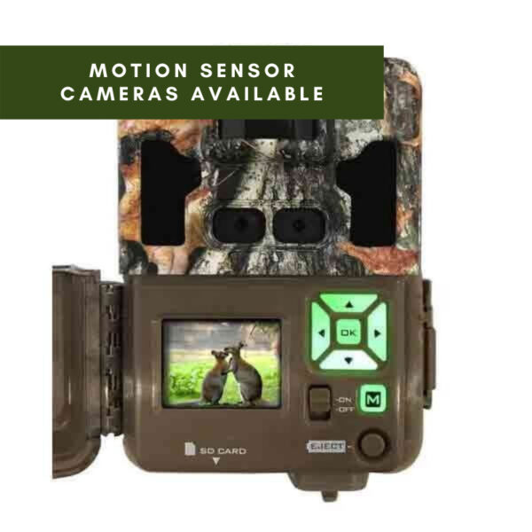 Motion sensor cameras available