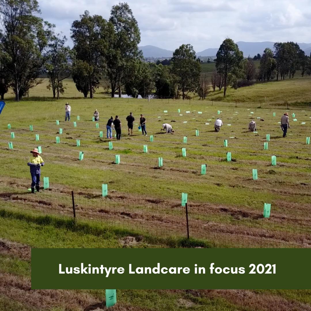 Luskintyre Landcare in focus 2021