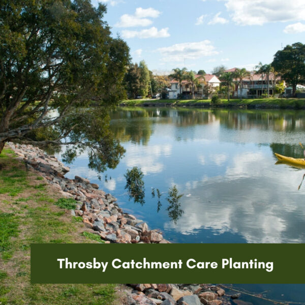 Throsby Creek Catchment